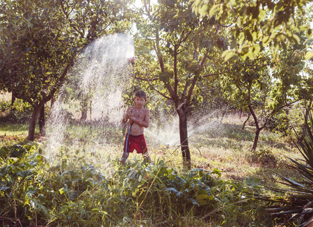 7 year old boys: The boy helps to water a garden