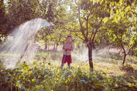 6 7 year old: The boy helps to water a garden