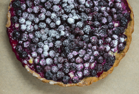 summer pudding: Tart from fresh blackcurrant