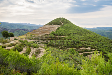Old vineyard  against mountains and blue sky. Catalonia, Spain. Autumn day