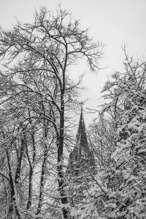 Gothic Church in winter day. Lviv city, Ukraine