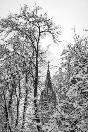 Gothic Church in winter. Lviv city, Ukraine