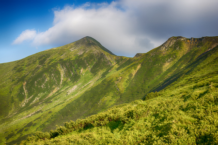 Summer landscape in the Ukrainian Carpathian mountains. View on the Mount Hoverla