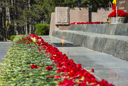 Red carnations by the eternal flame. Obelisk of Glory to the heroes of the battle for Sevastopol. Sapun mount, Crimea