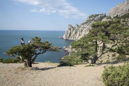 Beautiful summer landscape on the Black Sea, Crimea Banque d'images