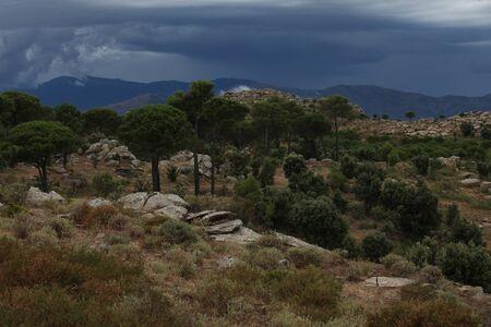 Summer landscape. Spain, Catalonia, Costa Brava Reklamní fotografie