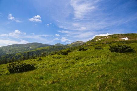 Mountain hills, Carpathian mountains landscape in summer
