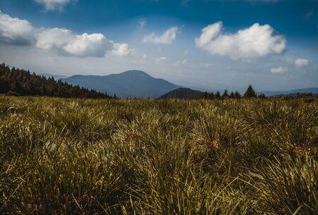 Mountain hills, Carpathian mountains landscape. Ukrainian Carpathians