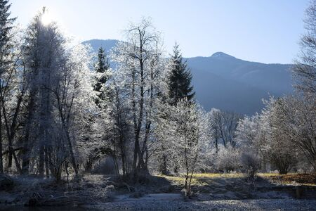Winter morning in the mountains. Slovenia