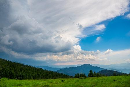 Beautiful summer landscape in Carpathian mountains