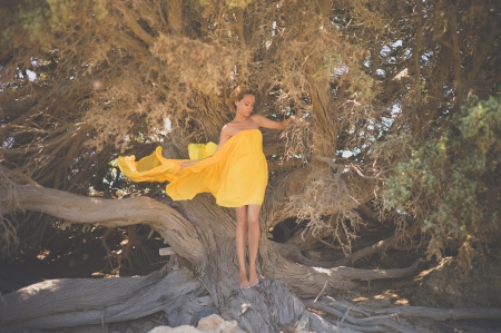 Beautiful young lady in yellow dress with mighty tree photo