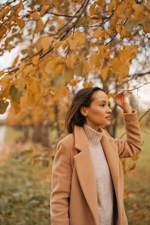 Outdoor fashion photo of young beautiful lady in beige coat, knite sweater and beret surrounded autumn leaves. Warm autumn