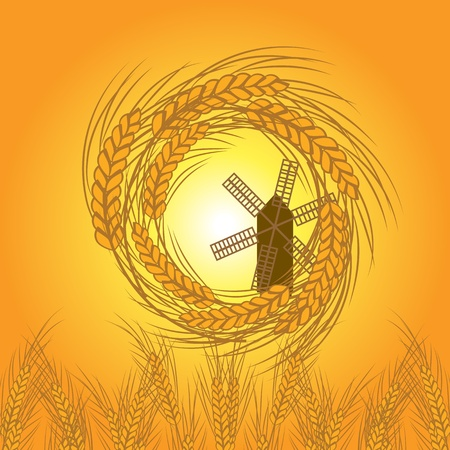 wheat vector Stock Vector - 12854948