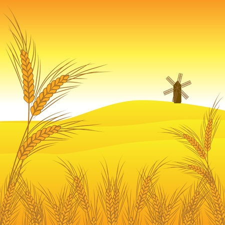 wheat vector Stock Vector - 12854943