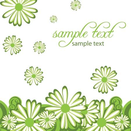 fond abstrait avec des fleurs de camomille