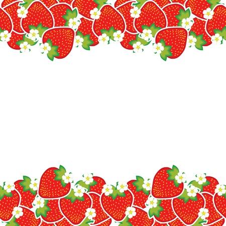 frutillas: fresas maduras