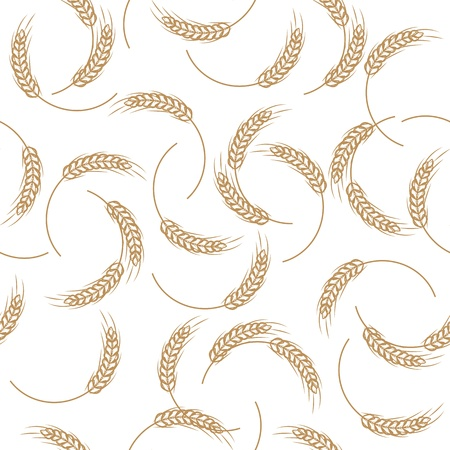 wheat illustration: seamless pattern of wheat