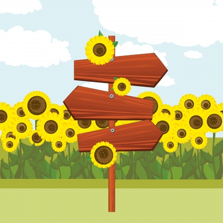 Wooden signs and a field of sunflowers Vector