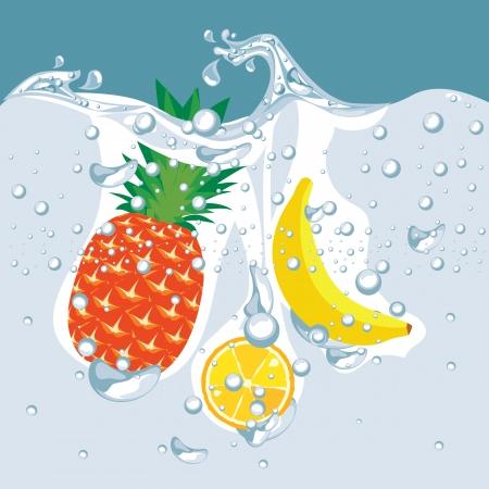 under water: vector of the fruit under water