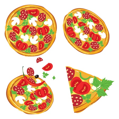 pizza ingredients:  illustration of pizza on white background