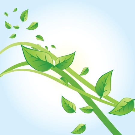 Vector green leaves Stock Vector - 17664960