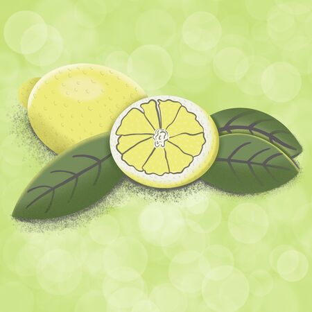two lemons and leaves, illustration Stok Fotoğraf