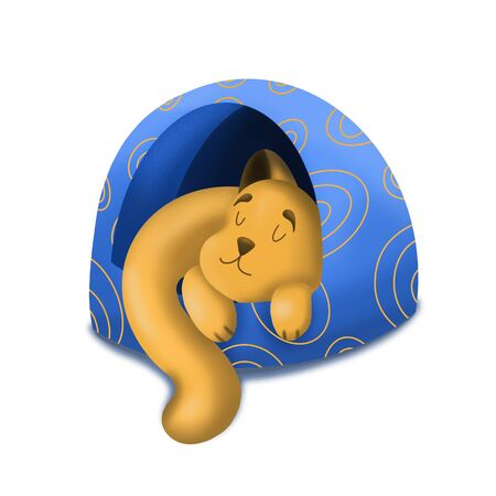 Sleeping cat in a blue house, Pets, character design, illustration on a white background. 写真素材
