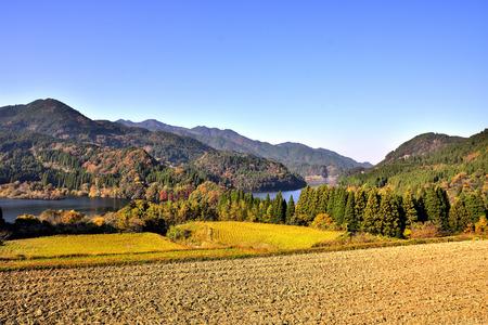 Japanese autumn leaves Hachi nosko autumn leaves landscape