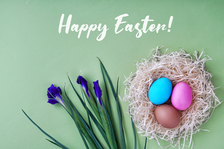 Greeting card happy easter. Colored eggs and nest, iris flowers. Good concept. Stock Photo