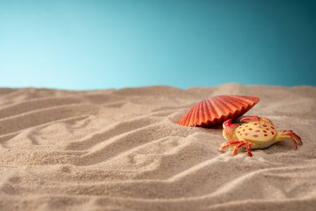 Seashell in the sand, a shelter for mollusks. Travel card, blue