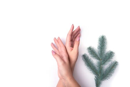 Fashion, womens hands with manicure, nail care, Christmas tree twigs, concept of healthy skin and natural cosmetics.