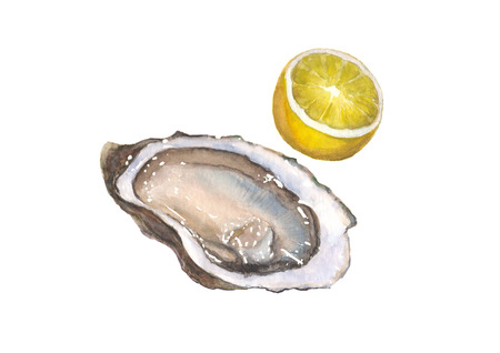 Watercolor oyster and lemon