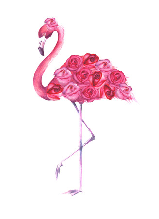 Tropical exotic bird pink flamingo with roses isolated on white background. Watercolor hand drawn natural botanical classic illustration for wedding invitations, greeting cards.
