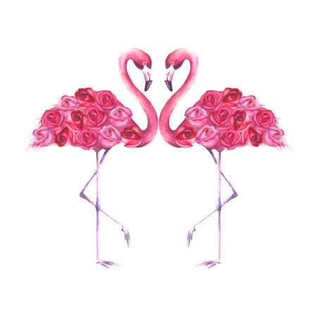 Couple of tropical exotic pink flamingos with roses isolated on white background. Watercolor hand drawn natural botanical classic illustration for wedding invitations, greeting cards. Stock Photo