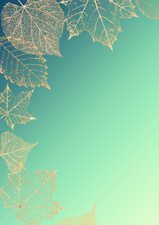 Autumn bright color vertical background. Beautiful gold transparent skeleton leaves delicate pattern texture on teal green blue background with space for text.