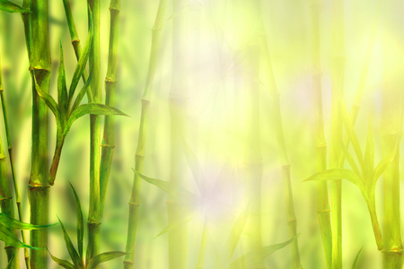 Bamboo spa background. Watercolor hand drawn green botanical illustration with space for text. Watercolour bamboos plants chinese oriental design. Forest border frame on blurred sunny bokeh background