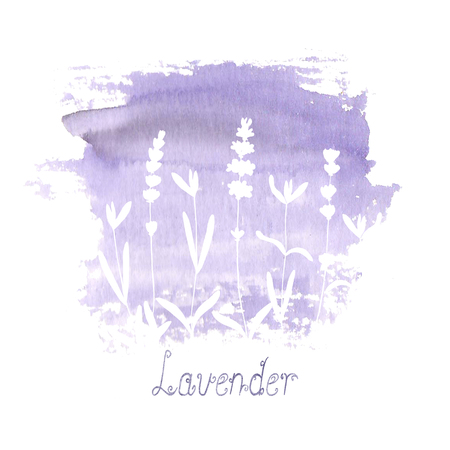 Lavender flower white silhouettes on purple stain isolated on white background. Watercolour hand drawn flowers. Watercolor botanical illustration with lettering. Print for greeting cards, textile.