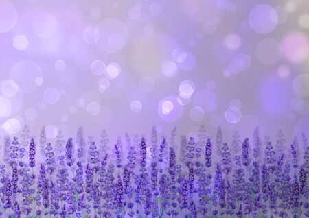 Lavender field pattern background with bokeh effect. Watercolour hand drawn flowers, leaves, plants. Watercolor purple botanical illustration. For invitation, wedding, greeting cards, textile design. Banco de Imagens