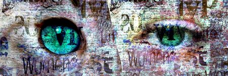Mixed media. Contemporary fashion catwoman portrait. Beautiful female green eye and cat eye on newspaper texture. Newspapers art print grunge collage. 版權商用圖片