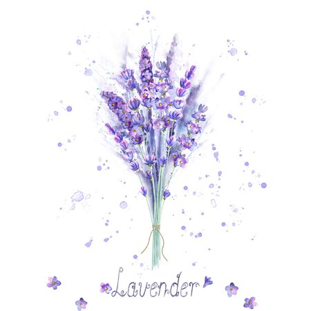 Watercolor lavender bouquet. Lavender flowers, plants, watercolour splashes and lettering on white background. Purple green hand drawn botanical illustration. For invitation, wedding, greeting cards. Illusztráció