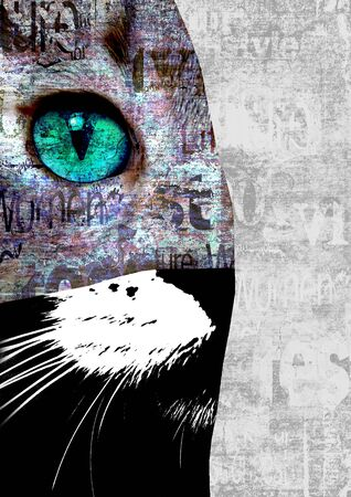 Mixed media art collage. Close up view of cat with green eyes. Cut portrait on newspaper paper print grunge texture background. Pets and lifestyle concept. Space for text. Close-up. Reklamní fotografie