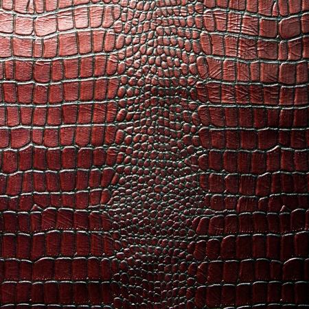 Krokodil-Leder-Textur