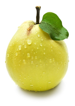 asian pear: Quince with green leaf on a white background