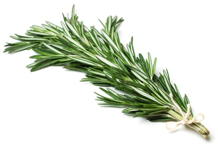 flavorful: Rosemary  Stock Photo