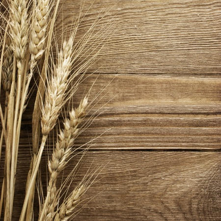 wheat flour: wheat on the wood background Stock Photo