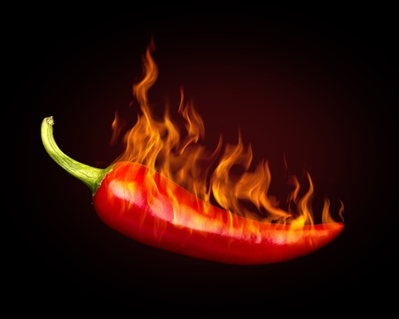 spicy chilli: Red hot chili pepper on black background with flame Stock Photo