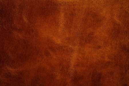 rough leather: leather texture closeup