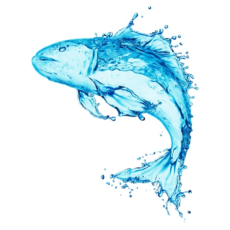 water drip: water fish splash isolated on white background  Stock Photo