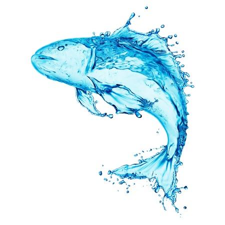 vis: water vissen splash op een witte achtergrond Stockfoto