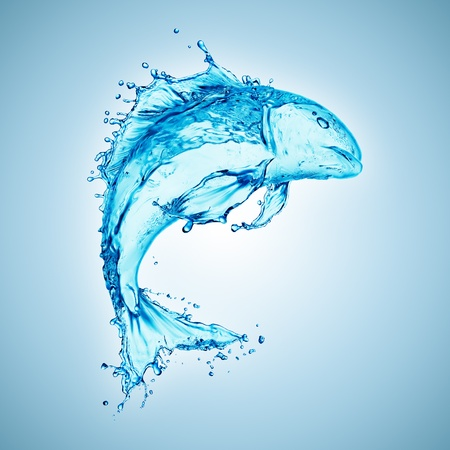 fish isolated: water fish splash isolated on white background  Stock Photo